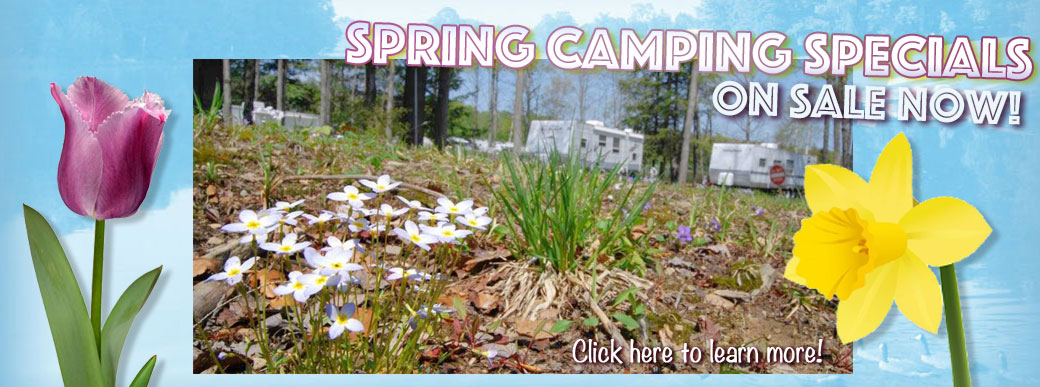 Spring Camping Specials on sale now!